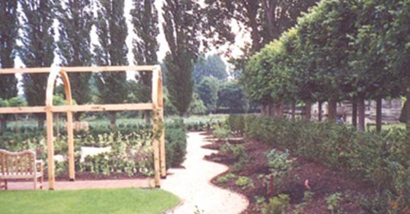 arbrer fleur jardin